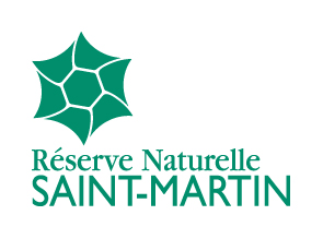 rnn143-logo