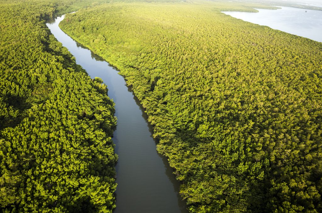 Grand Rivière Goyave Frederic Larrey