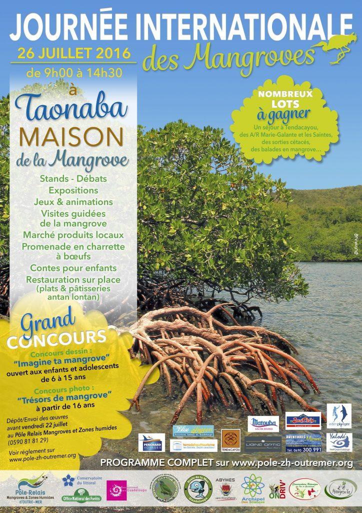 A4-journee-mangrove